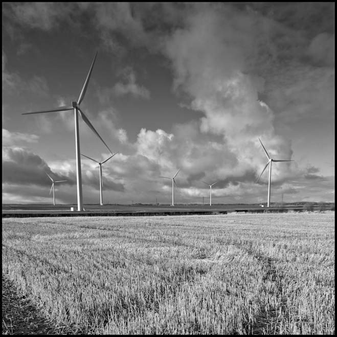 Today Aujourd'hui  Wind Turbines near Newbiggin Northumberland