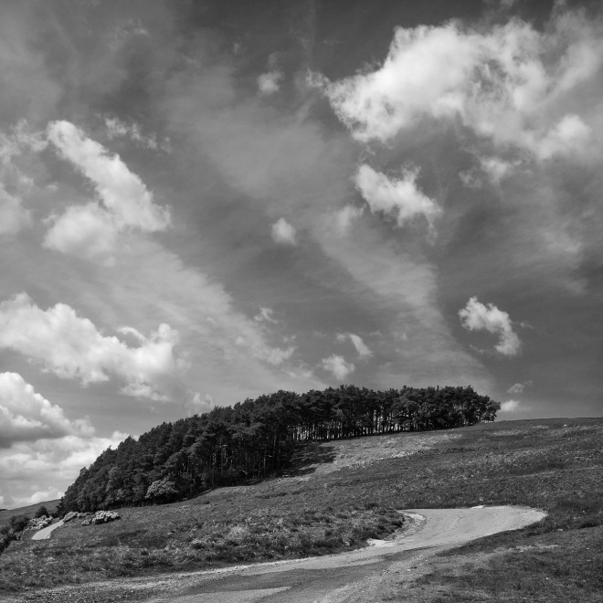 Little Hill Trees and Clouds